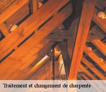 Traitement de charpente